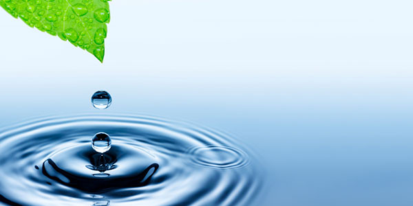 Green Dialysis - Healthcare Professionals Resource Conservation - Water